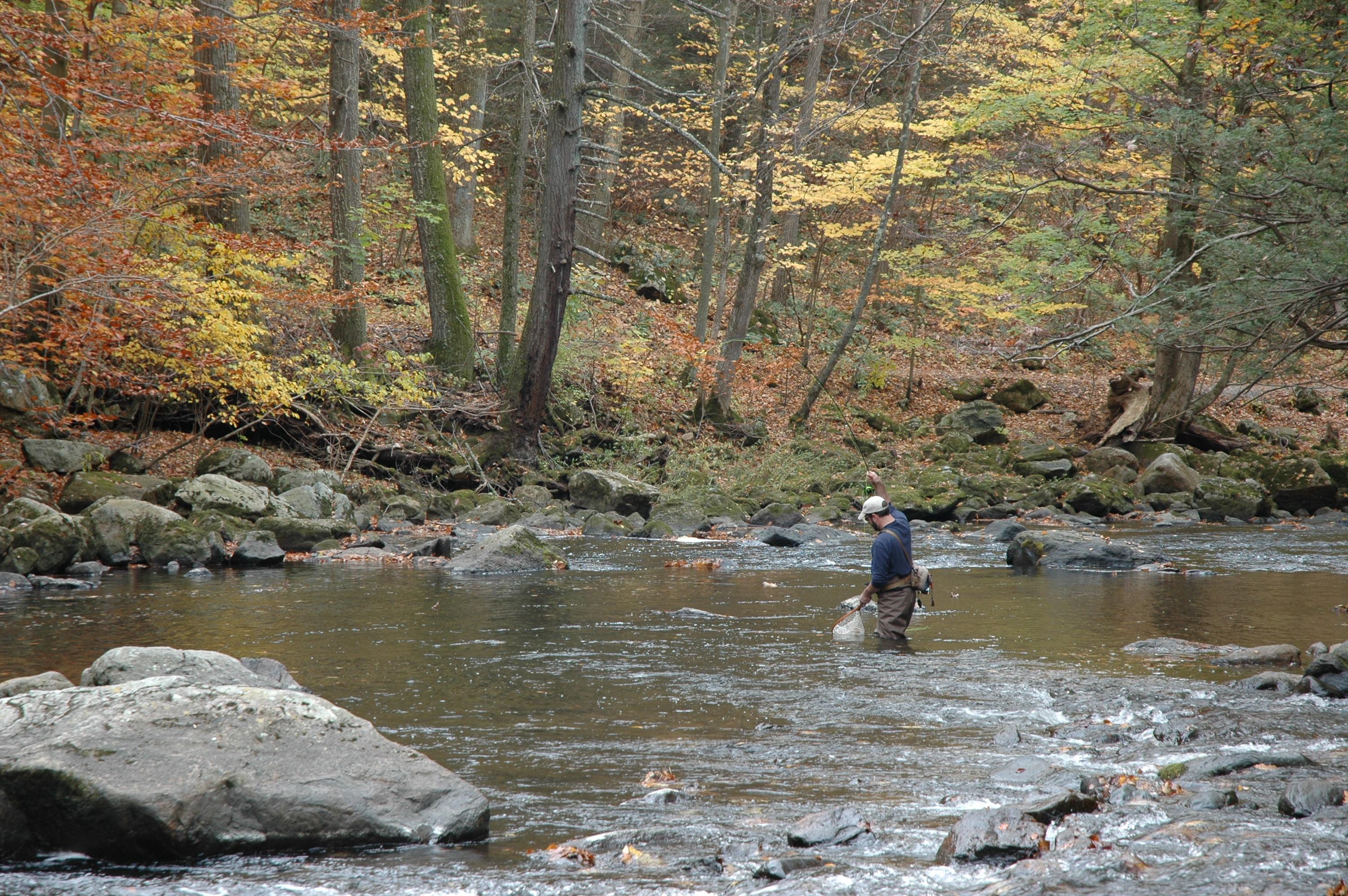Ken lockwood gorge bmore energy for Nj fly fishing