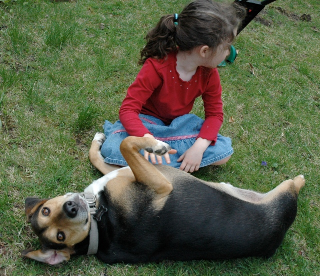 "Louie the Lovebug says, ""Pleassse scratch my belly!""to my niece."
