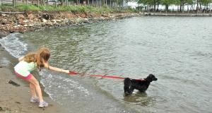 """C'mon!  Let's go in the water!"""