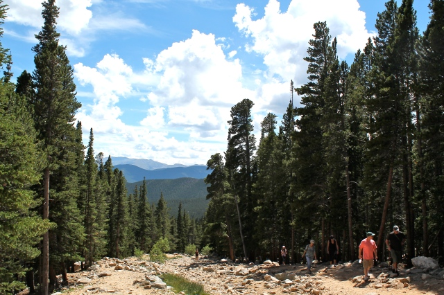 Hiking up to 11,000 feet above sea level.