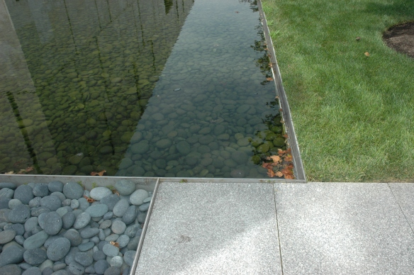 Water, stones and grass.