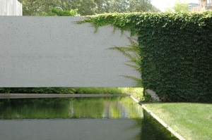 Water, concrete and ivy.