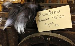 Varmint Tails.