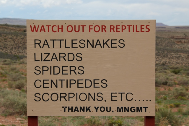 Sign seen in Navajo Nation.  First of all, I DIDN'T see any critters, secondly, Teen Daughter pointed out that some of the critters lists ARE NOT reptiles, and thirdly, who is the management behind this sign?  It was posted on the side of the road next to Navajos selling jewelry and a whole bunch of scrub brush.