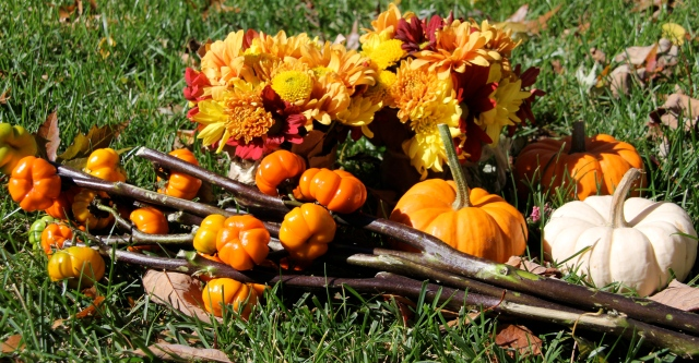 Flowers, pumpkins and pumpkin trees.