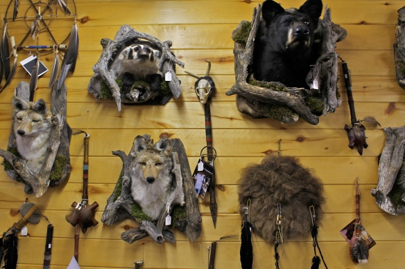 Taxidermic wall.
