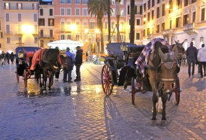 Horse-drawn carriages in