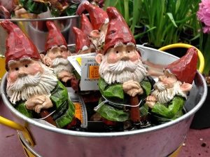 Mischievous-looking gnomes caught my eye at the garden center.