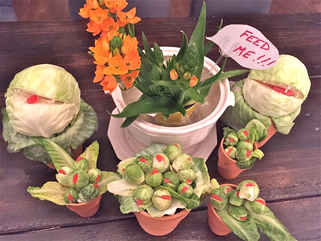 """A Sun Star plant along with Brussels sprouts and cabbages welcome theatre goers. """"Audrey II's"""" and photo care of my friend Lynn."""