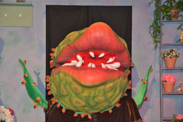 Audrey II, the man-eating plant, in Little Shop of Horrors.