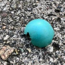 Robin's egg blue!