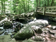 Boulders tumble down from trails.