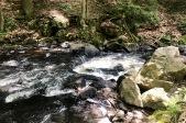 One of the mini waterfalls.